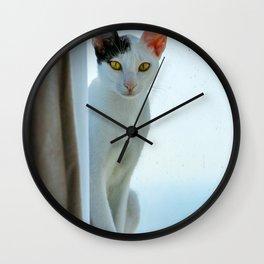 Cat By A Window Wall Clock