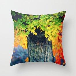 Bridging Seasons Throw Pillow