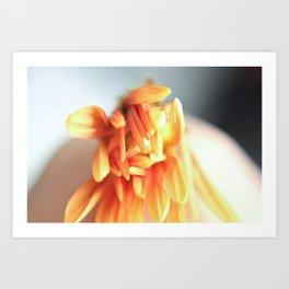 Orange Bloom III Art Print