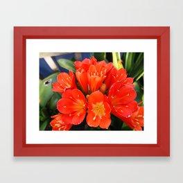 flowers - unknown Framed Art Print