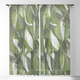 Beautiful Variagated Green Leaves Nature #decor #society6 #buyart Sheer Curtain