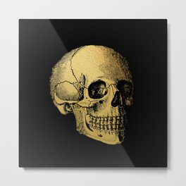 The Anatomy of Shadows Metal Print