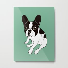 Cute double hooded pied Frenchie is chilling at home Metal Print