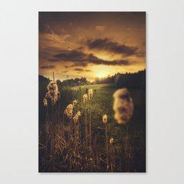 Unborn Canvas Print