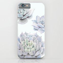 Blue Succulents iPhone Case