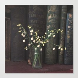 In the Library Canvas Print