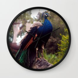 Peacock Rock Wall Clock