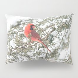 Cardinal on a Snowy Cedar Branch (v) Pillow Sham