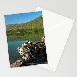 Driftwood On Lakeshore Stationery Cards