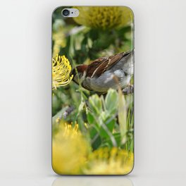 Birds and Flowers iPhone Skin