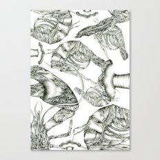 Aphrodisy Monochrome Canvas Print