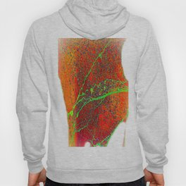 abstract spiderweb Hoody