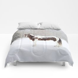 Pinto Horse In Snow Comforters