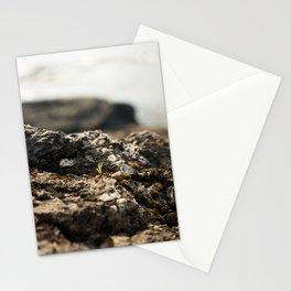 Orcas Coastline Stationery Cards