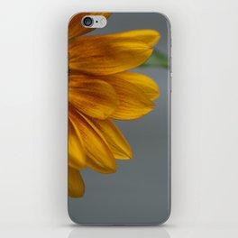 Sunflower in Yellow iPhone Skin
