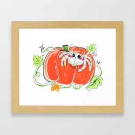 Jumping spider with pumpkin Framed Art Print