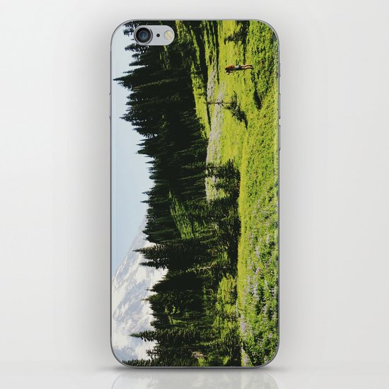 Mt Rainier Shooter iPhone & iPod Skin