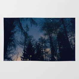Night Forrest Rug