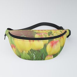 Yellow Red Tulips Fanny Pack