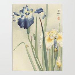 Ohara Koson, Iris Woodblock Print Poster