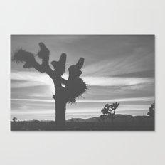 Joshua Tree Silhouettes Canvas Print