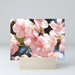 Pink Cherry Blossoms 2 Mini Art Print