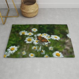 butterfly in the daisies Rug