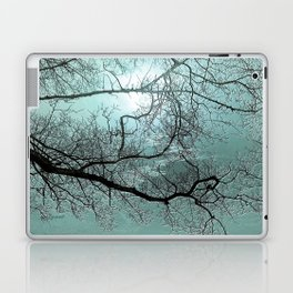 Blue Danube Laptop & iPad Skin