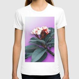 Delicate pink Frangipani, tropical flower. T-shirt