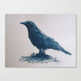 Blue crow Canvas Print