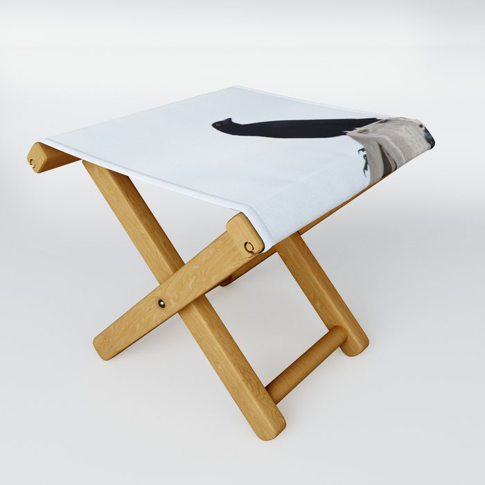 Bird collection _03 Folding Stool