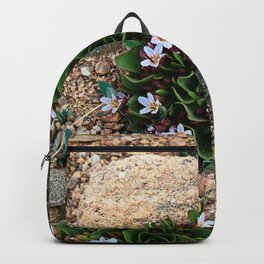 Alpine Spring beauty Colorado Backpack