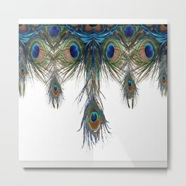 BLUE-GREEN PEACOCK FEATHERS WHITE ART #2 Metal Print