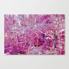 LSD I Canvas Print