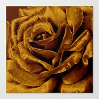 Canvas Prints featuring copper velvet rose by clemm