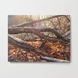 Fallen Archway Metal Print