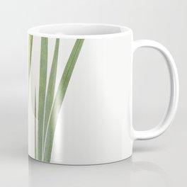 Iris Nepalensis from The genus Iris by William Rickatson Dykes (1877-1925) Coffee Mug