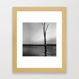 Stand Tall, Alone Framed Art Print