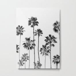 Black & White Palms 3 Metal Print