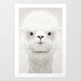 SMILING ALPACA Art Print