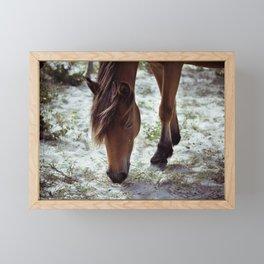 grazing Framed Mini Art Print