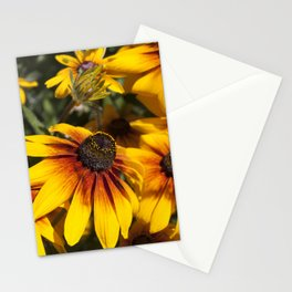Yellow Coneflowers Stationery Cards