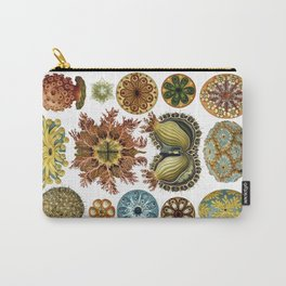 Ernst Haeckel Ascidiae Sea Squirts White Background Carry-All Pouch