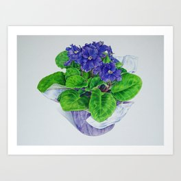 African Violet Art Print