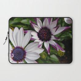Purple and White Osteospermum Laptop Sleeve