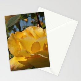 Celebrity Rose Stationery Cards