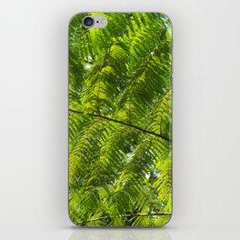 jungle fern iPhone Skin