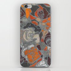 Relief iPhone & iPod Skin