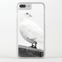 White dove Clear iPhone Case