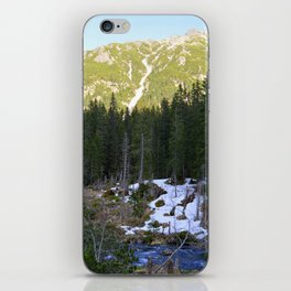 The Snow is Melting iPhone Skin